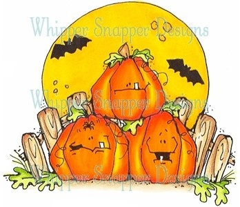 Pumpkin Patch Heaven
