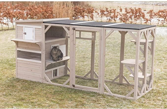 Great Cat Playground Outdoor Cat Playground Outdoor Cat Playground Outdoor Cat House