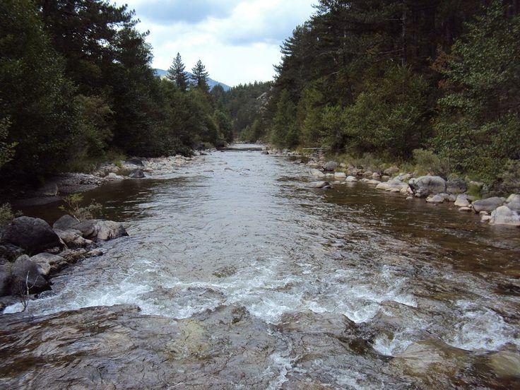 αωος ποταμος - Αναζήτηση Google