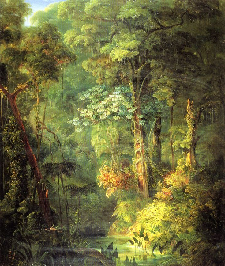 PINTORES VIAJEROS Landscape of the Brazilian tropilcal forest by Johan Moritz  Rugendas (1802-1855)