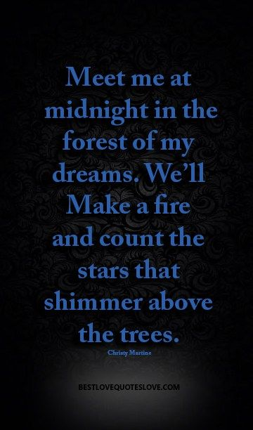 Meet Me At Midnight In The Forest Of My Dreams Well Make A Fire