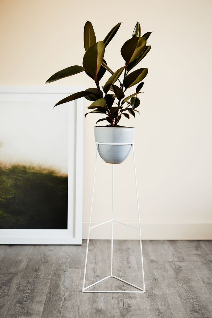Ivy Muse Plant Stand