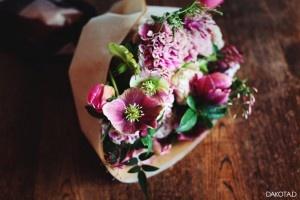 Winter Roses Hellebores