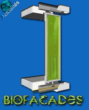 Teramer® Blog – Cultiver des microalgues en photobioréacteurs sur des façades de bâtiments