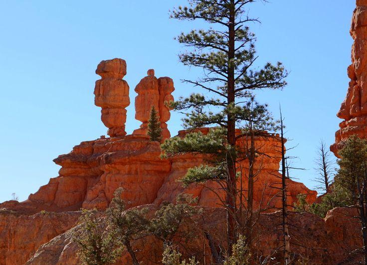 On the road again – Grand Canyonilta Bryce Canyonille | Meriharakka.net