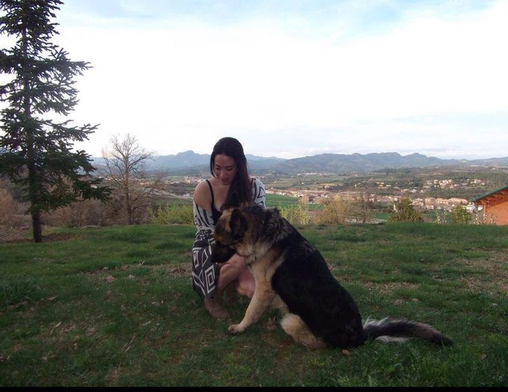 Lovely Dog! my best pet ever