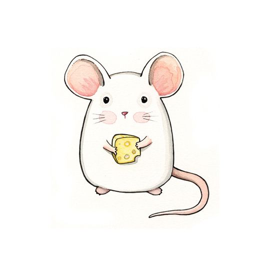 sweet little mouse