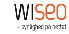 Dette danske firma arbejder med søgeoptimering / søgemaskineoptimering / SEO