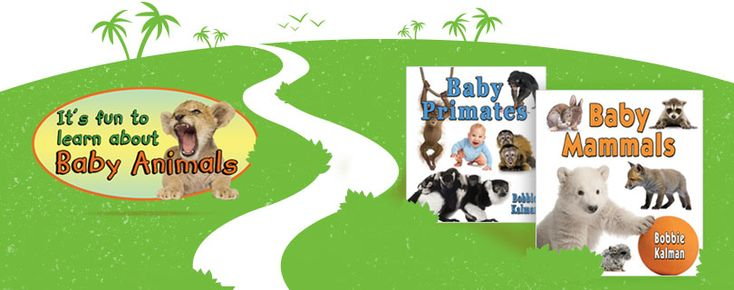 It's Fun to Learn About Baby Animals series (Crabtree Publishing) _learn about basic curriculum concepts, such as animal classification, colour and pattern, habitats, animal anatomy, senses, diet, family structures, the role of play and life cycles. Grades K-3