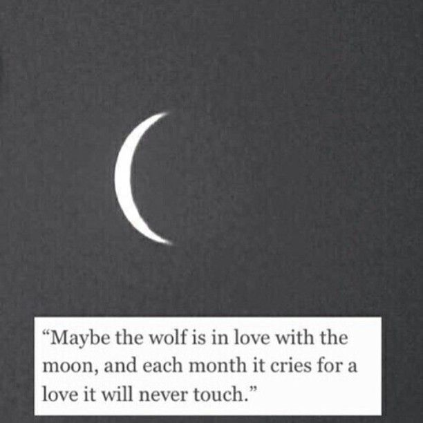 Maybe the wolf is in love with the moon.