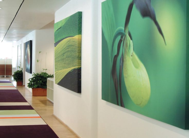 Large Custom Printed Acoustic Panels Acoustic Wall Wall