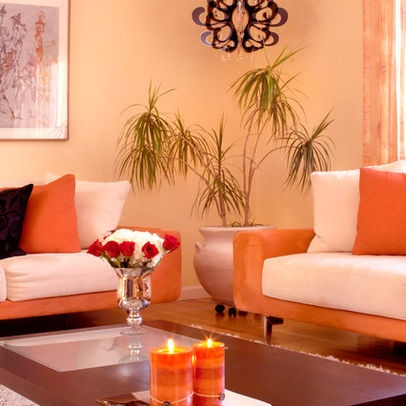 San Francisco Home Orange Rooms Design, Pictures, Remodel, Decor and Ideas