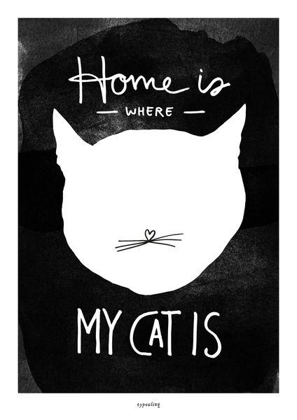 Poster & Bilder - Kunstdruck Poster / Cat - ein Designerstück von typealive bei DaWanda