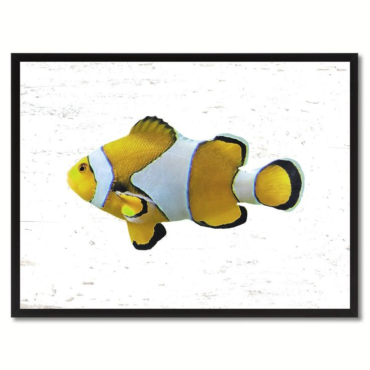 Yellow clown tropical fish painting reproduction gifts for 405 tropical fish