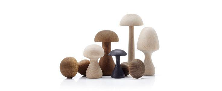 Funghi Svampe
