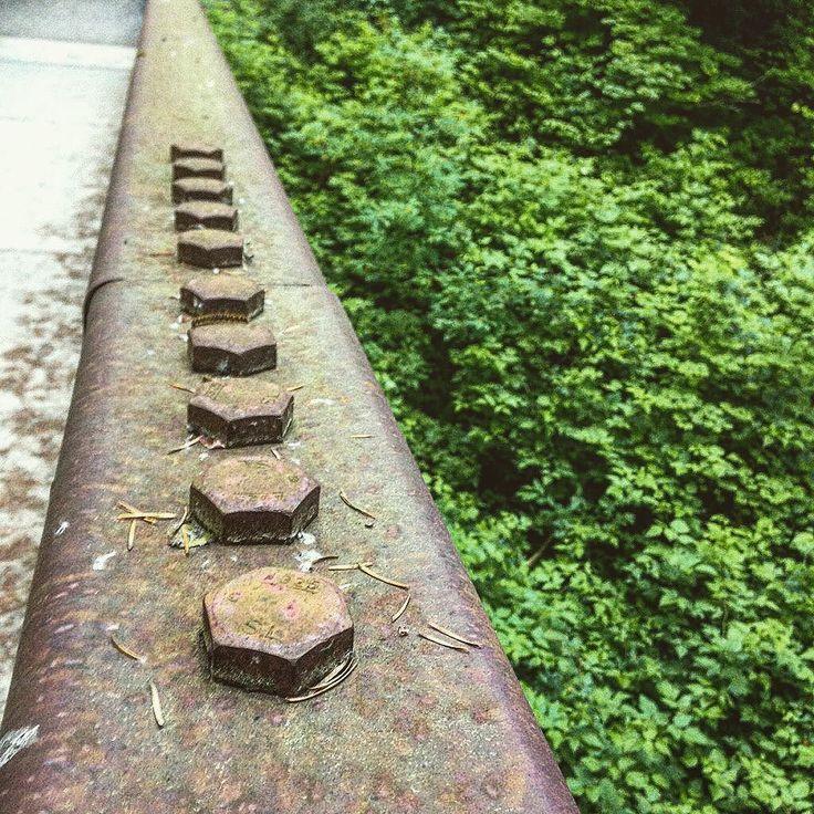 Screw  Nature #screw #forest #green #perspective #trail #ocean #fashiondesign #designer #mirrorless #a6000 #fashiondesigner #creative #ui #ux #model #moda #seattle #la #ny #london #paris #tehran #art #fashionista #fashionblogger #landscape #photography #industrialdesign #green #plants by hosseinkaveh