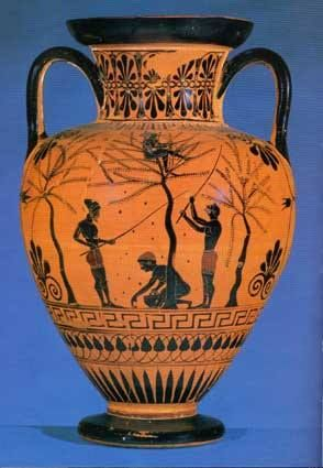 Vulci's amphora, around 500 b.C., British Museum of London. The decoration illustrates the olive harvest in the ancient times: today we still do it that way. #Laudemio #artgallery www.laudemio.it