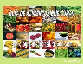 La Nueva Guía Electronica De Alimentos Qué Curan