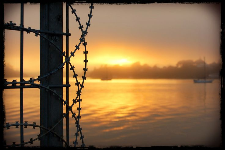 Prisoner of the dawn. Sun rise at Hobsonville Point, Auckland. Photo: Su Leslie, 2015