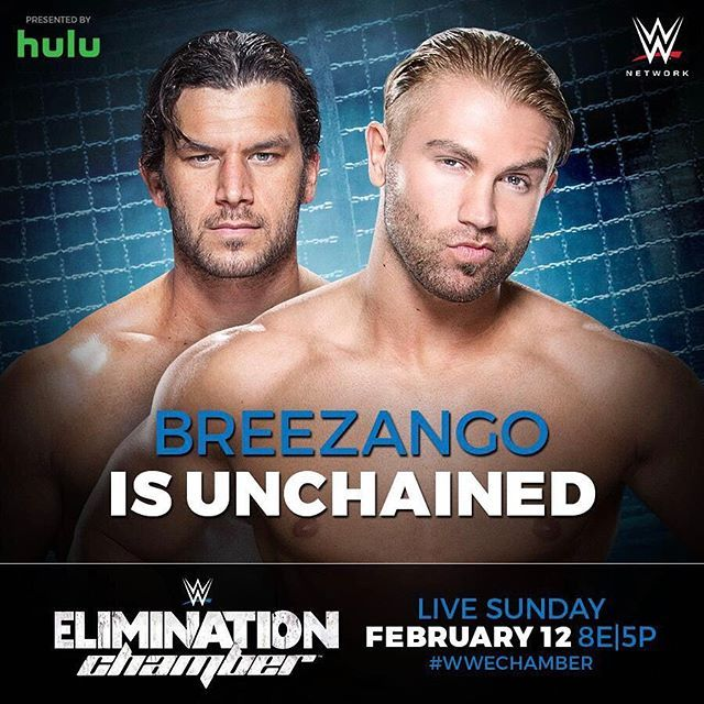 wwe The #FashionPolice @mmmgorgeous and @wwefandango will be handing out fashion violations and beatdowns in the #SDLive Tag Team Championship Turmoil Match at #WWEChamber! @wwenetwork  2017/02/13 01:58:42