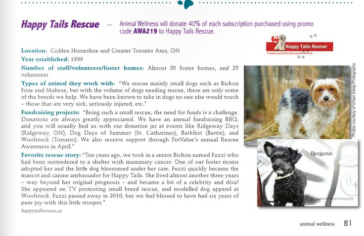 Scroll down the Links page to see our featured article in Animal Wellness Magazine!  AWM Vol. 16 Issue 4 2014 - Subscribe to their magazine using promo code AWA219 and Happy Tails Rescue receives a 40% donation off of each subscription fee!  A win-win for you, and Happy Tails Rescue!  #HTR #HappyTailsRescue #Rescue #AWM #SmallBreedRescue #Ontario #GTA #GoldenHorseshoe