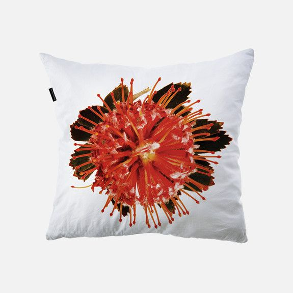 Clinton Friedman - Pin-Cushion Cushion Cover