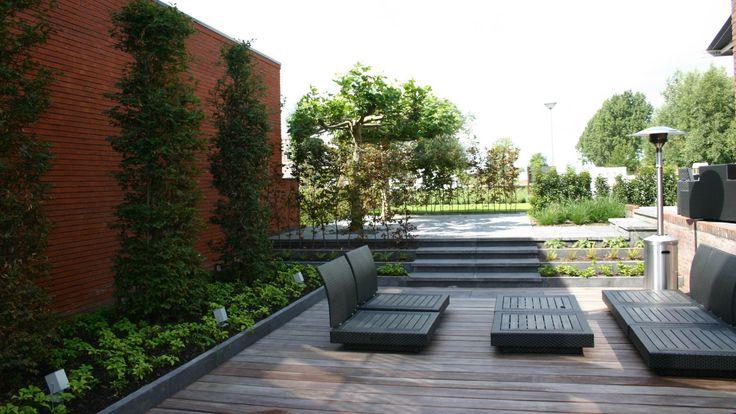 25 beste idee n over onderhoudsvriendelijke tuin op pinterest woestijn tuinieren achtertuin - Moderne tuin foto ...