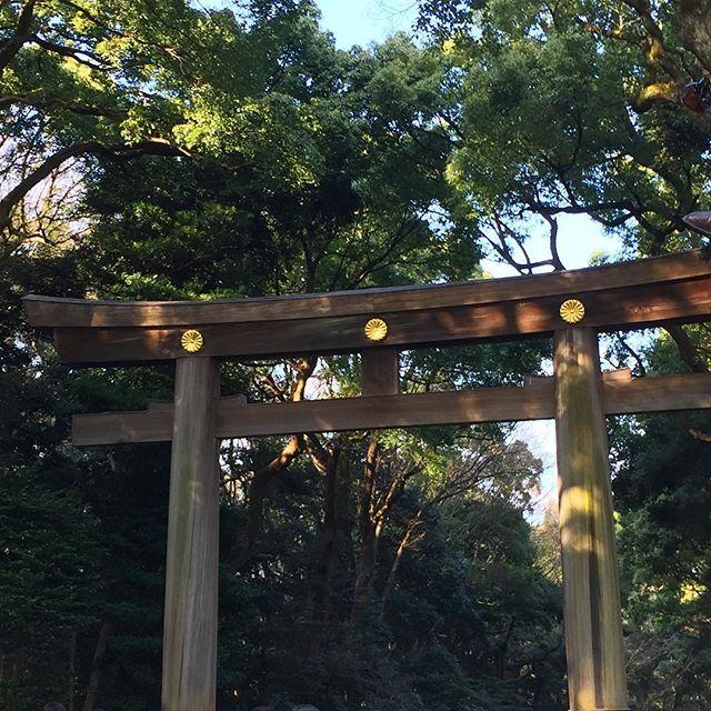 """【konstansebo】さんのInstagramをピンしています。 《Midt i den travle hovedstaden ligger tempelet Meiji som er dedikert til den tidligere keiseren Meiji og hans keiserinne Shoken. På veien inn til tempelet ble vi møtt av flere """"torii"""", enorme treporter som viser veien til templer.⛩ #鳥居 #森 #東京 #日本》"""