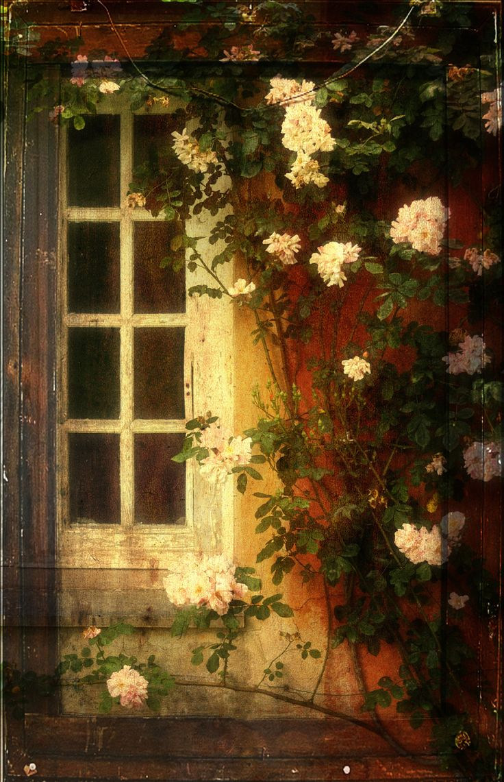 `My Garden Window...
