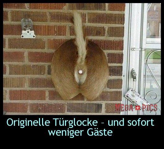 Originelle Türglocke – und sofort weniger Gäste - www.MegaPics.ch. Lustige Bilder, witzige Pics, fun Clips, fail Videos.