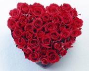 36 red roses heart shape arrangement
