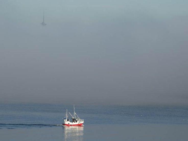 """Piękna pogoda, słońce, czyste niebo. Wystarczyło jednak wyjechać tuż za miasto, by ujrzeć taki niesamowity widok… Mgła. Wystarczyło może pięć minut, by całe miasto skryło się """"dymie"""". A w zasadzie powinniście zobaczyć to:  Foto: Przemek Saracen Podobne"""