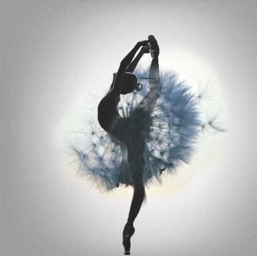 Blue dandelion..sowing the seeds of dance......