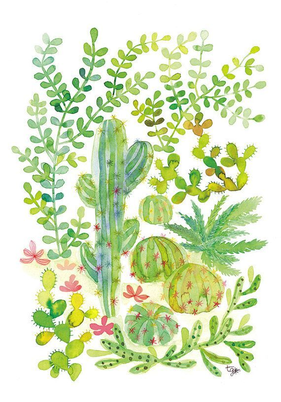 Cacti and Succulent Jungle Poster Illustration/Watercolor Multicolor Plant Art/Home Decor on Etsy