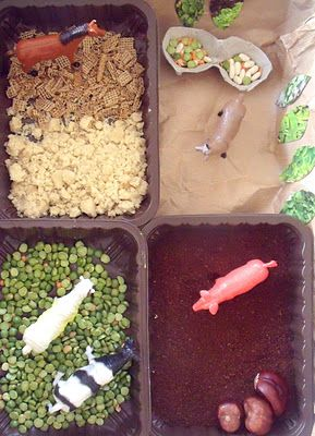 Small World Play - Farm  (actually really like this idea.  4 little trays w/ different ingredients mimicking fields +, with animals.  Supervise while using.)