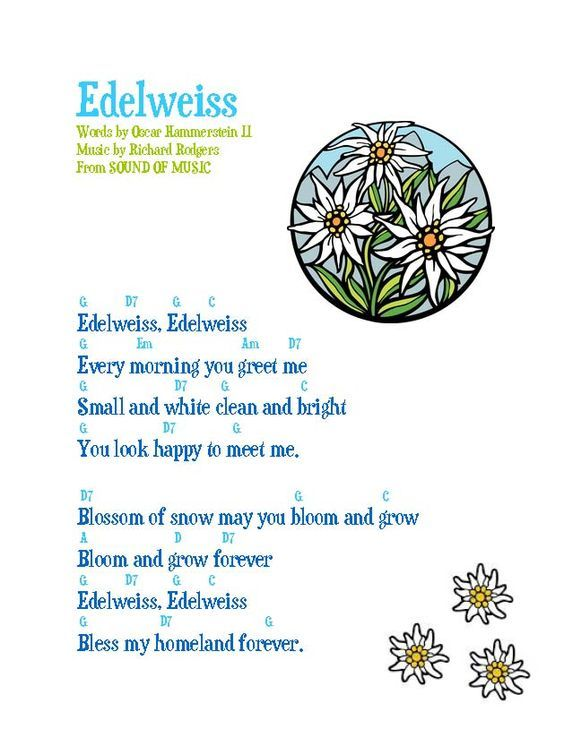 Edelweiss (lyric sheet with guitar chords) Words by Oscar Hammerstein II Music by Richard Rodgers From SOUND OF MUSIC edelweiss w guitar chords
