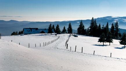 Elsass für Gourmets - Schneeschuh- und Winterwandern