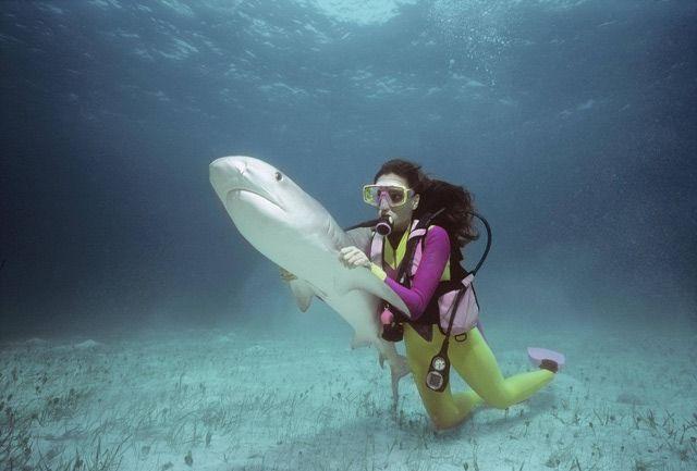 Top Wildlife Careers Over $50,000