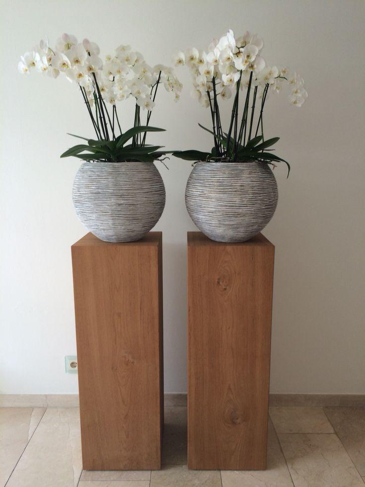 #teak #zuilen #orchidee