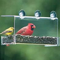 I love to feed the birds and I really want one of these feeders that attach to a window. I have to get this thing!