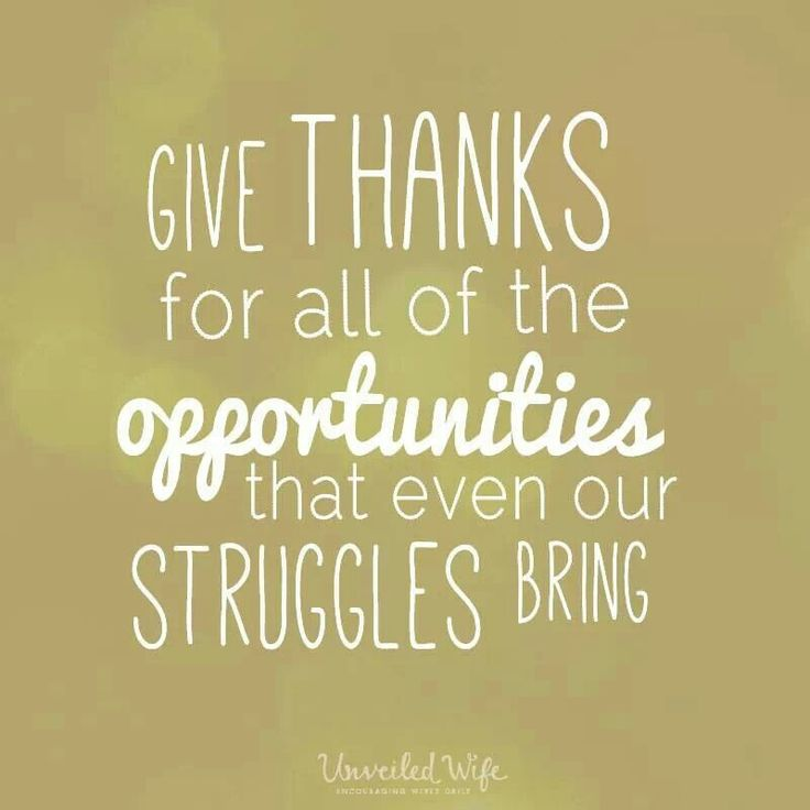 Giving Thanks Quotes 203 Best Attitude Of Gratitude Images On Pinterest  Positive .