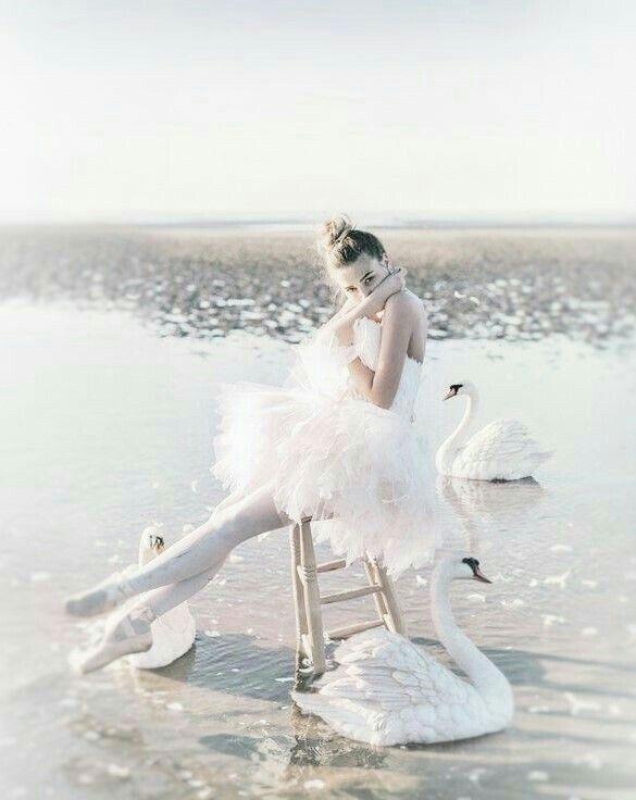 Ballerina ballet swan beauty