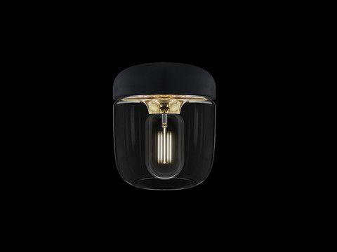 NEW - Acorn polished brass