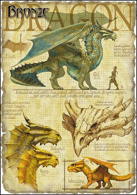 Bronze Dragon by Richard Sardinha