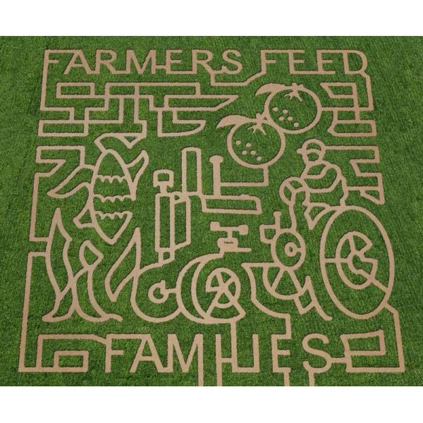 A Corn Maze For Every State: 50 Must-Visit Corn Mazes | thegoodstuff