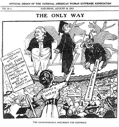 Suffrage Cartoon for the 1912 election. It appears as if TR is the only one offering a real platform for women.