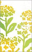 二月 菜の花畑 | 手ぬぐい | かまわぬ