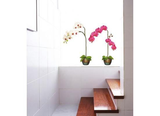 Inspirational Wandsticker Wandtattoo Orchideen im TopfDer Orchideentopfgarten ist das ganze Jahr ein Bl tenparadies Mit dem pr chtigem