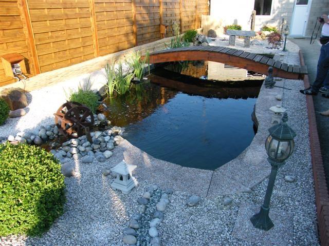 Le forum de passion bassin bassin de jardin baignade for Bassin de carpe koi