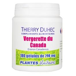Vergerette du Canada Thierry Duhec - Thierry Duhec La boutique de Compléments Alimentaires